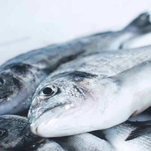 Scelta prodotti ittici Caterline